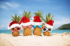 Caribbean Themed Christmas Party Nights Christmas Party in Birmingham
