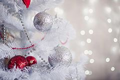 Holly Jolly Holiday Party Nights Christmas Party in Swindon