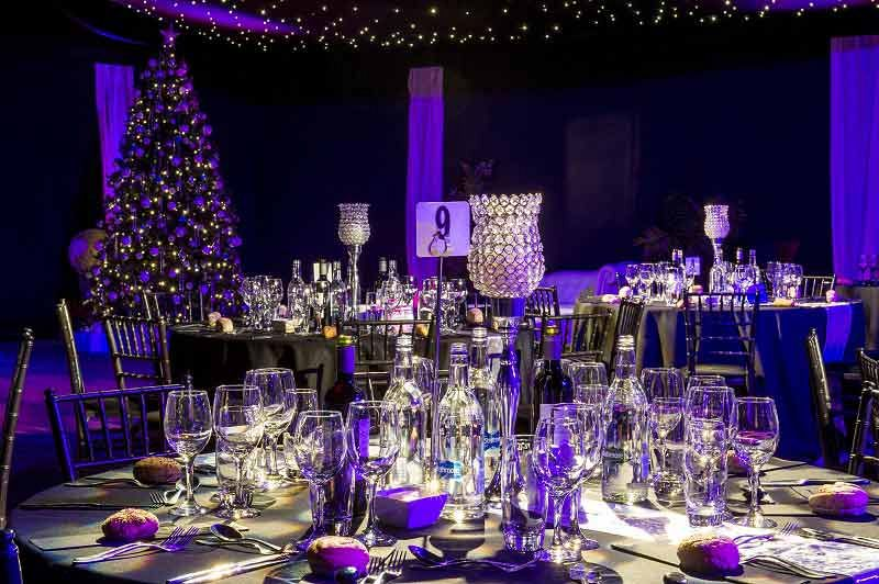 Enchanted Christmas Party
